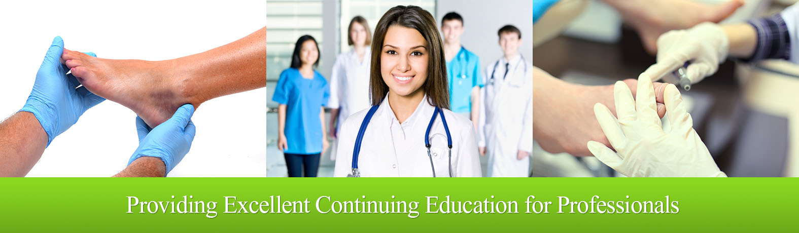 Providing continuing education for professionals