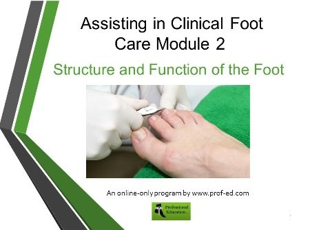 foot_care_assistants_mod_2
